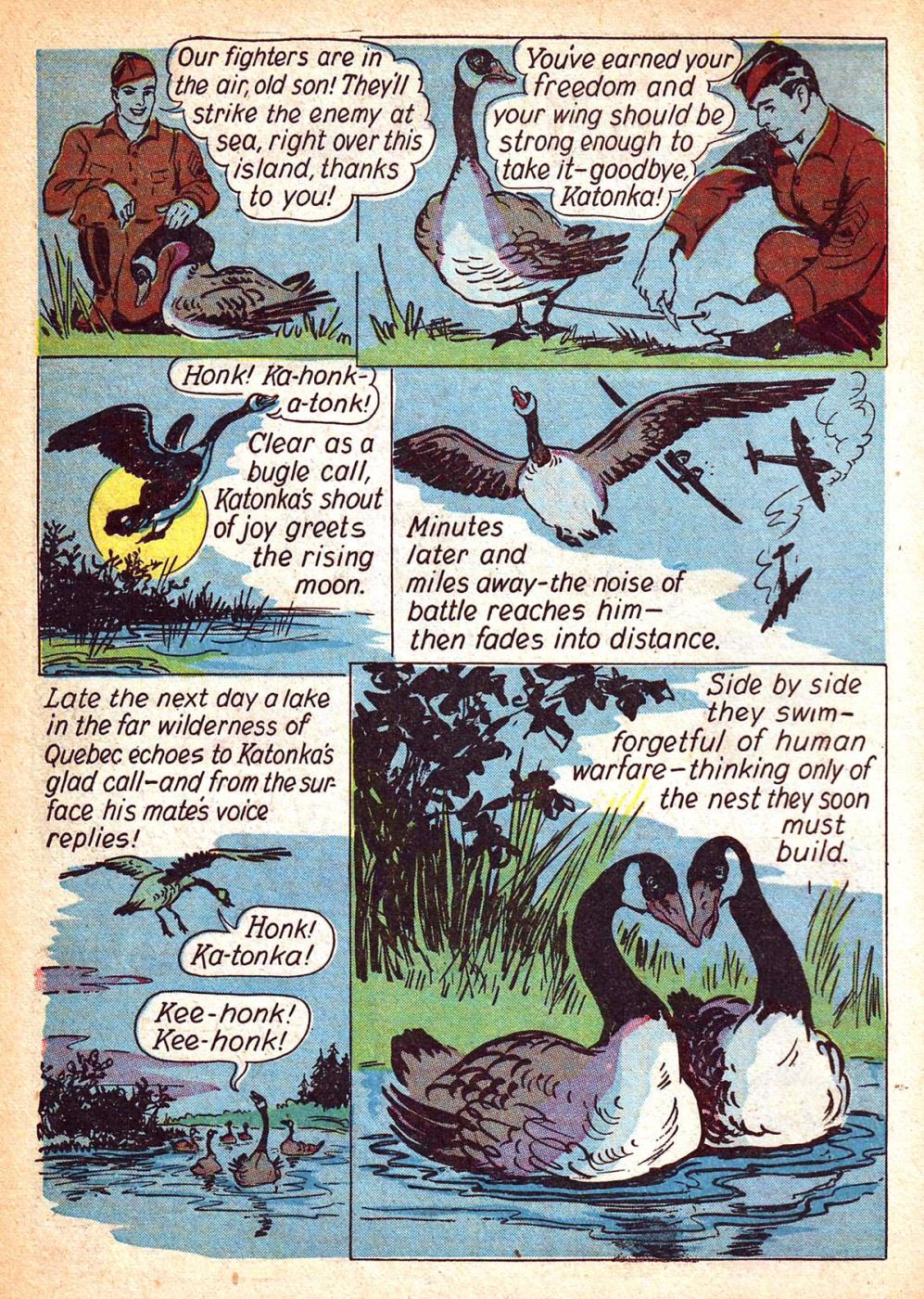 Funny Animal Comics (18)