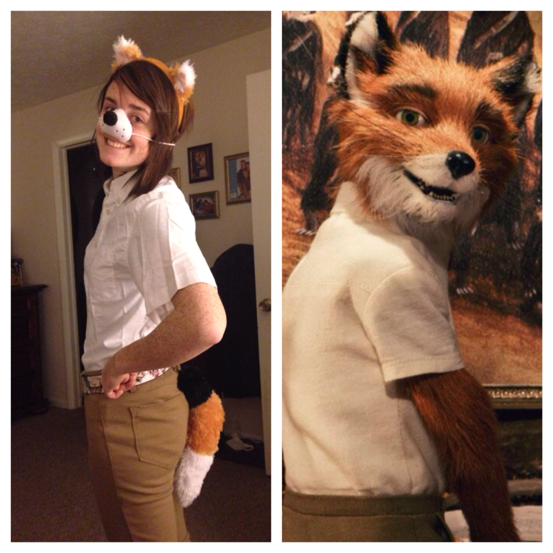 Adorable Fantastic Mr Fox Costume