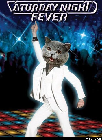 Caturday-Night-Fever