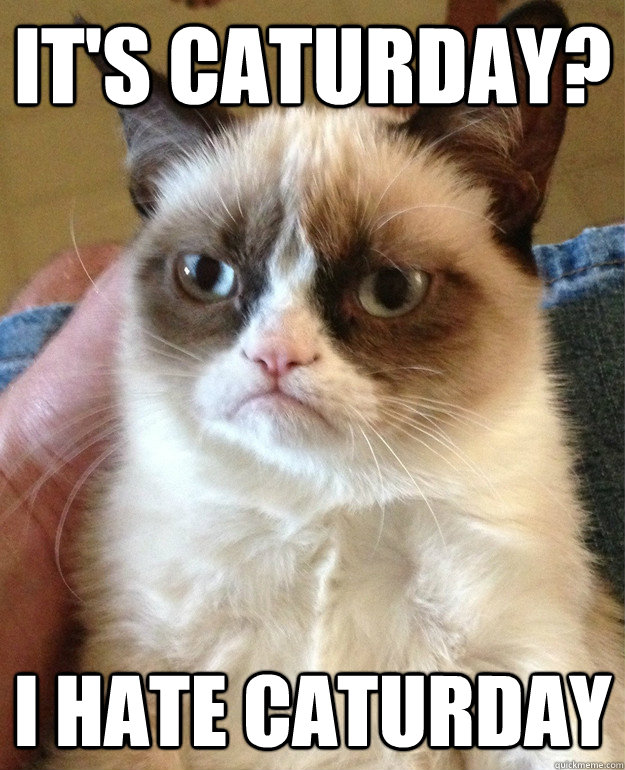 grumpy-cat-caturday