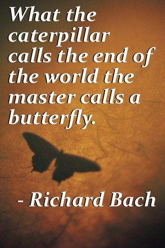 Inspirational Quotes About Love In Difficult Times : Read the best Richard Bach quotes . Amazing Quotes by Richard Bach ...