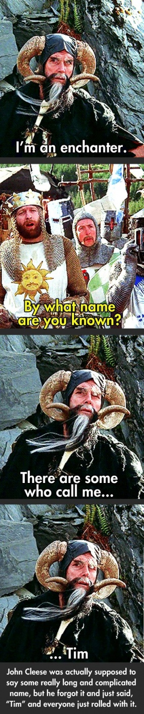 Monty Python And The Holy Grail Quotes By Tim The Enchanter